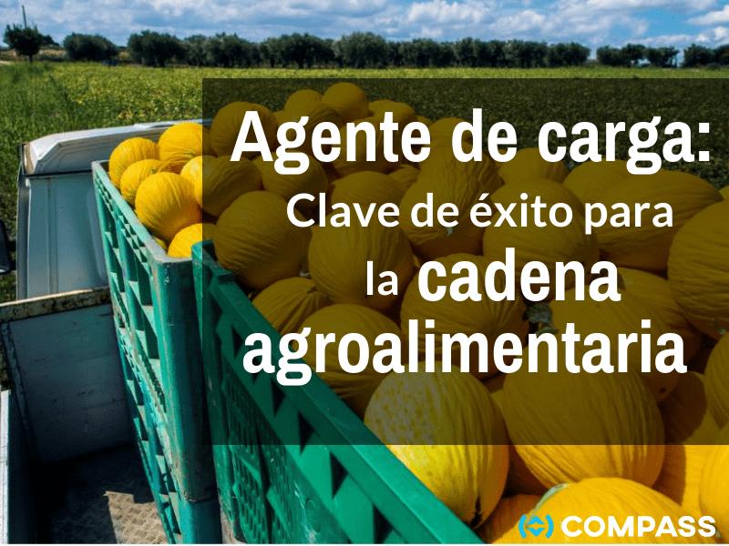 Agente de Carga: Clave de éxito para la cadena agroalimentaria