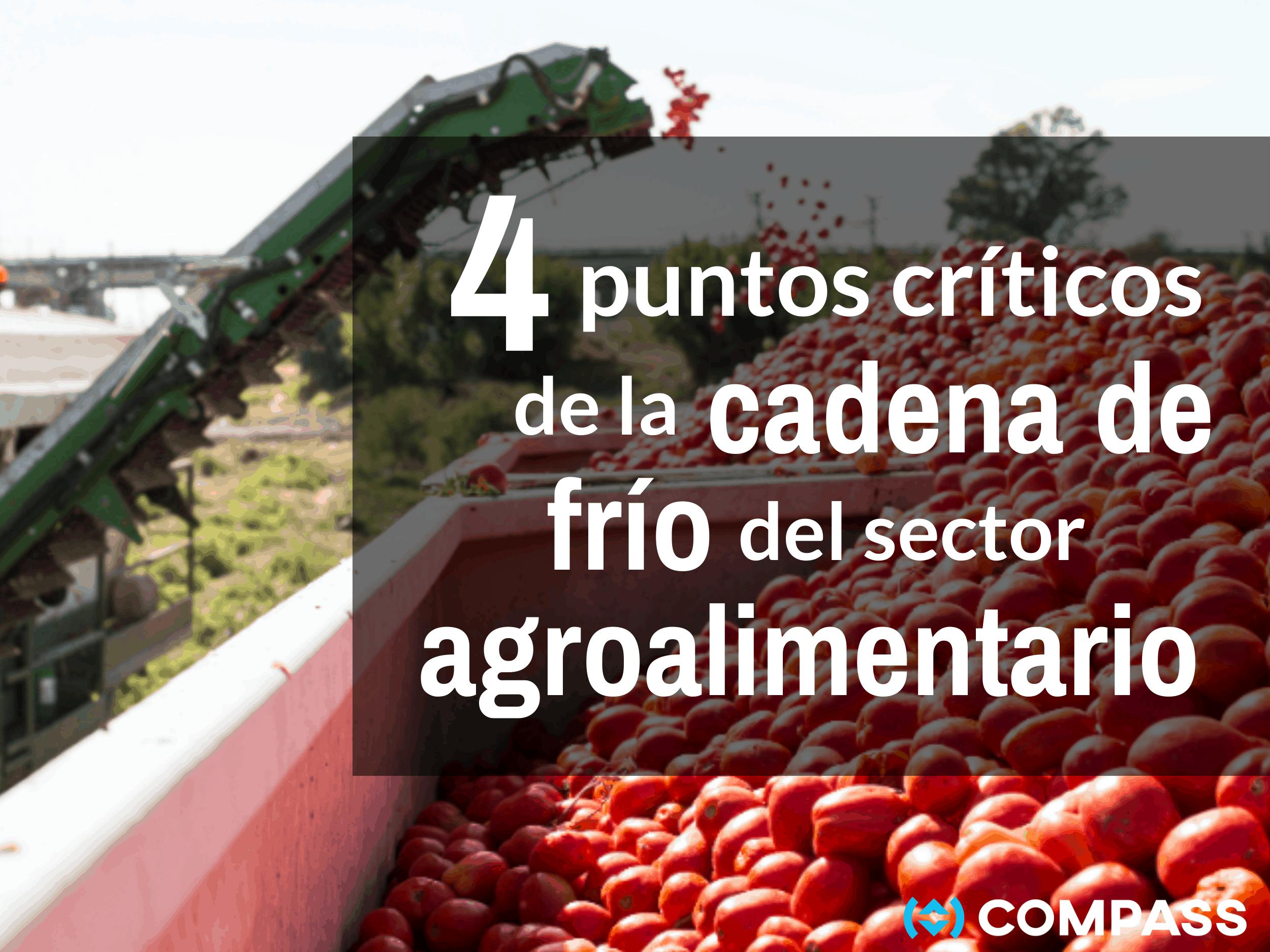 4 puntos críticos de la cadena de frío en el sector agroalimentario